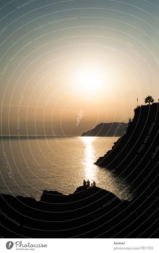 Strandfischer Natur Landschaft Urelemente Wasser Himmel Wolkenloser Himmel Sonne Sonnenaufgang Sonnenuntergang Sonnenlicht Sommer Schönes Wetter Baum Palme