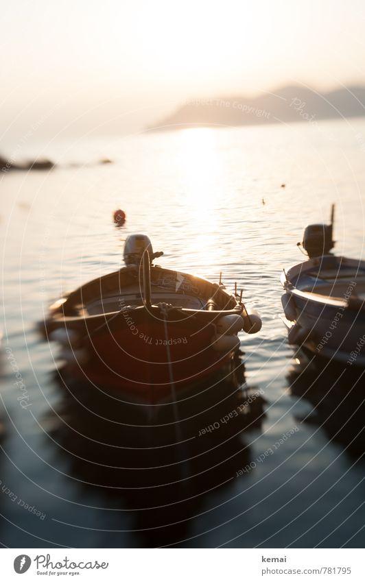 Nussschalen im Licht Freizeit & Hobby Ferien & Urlaub & Reisen Tourismus Ausflug Abenteuer Sommerurlaub Sonnenbad Meer Italien Wasser Sonnenaufgang