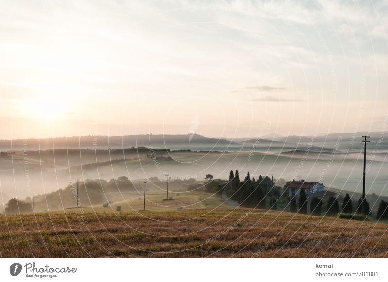 Morgennebel Himmel Natur Ferien & Urlaub & Reisen schön Sommer Baum Erholung ruhig Landschaft Wolken Ferne Umwelt Wiese Freiheit Feld Nebel