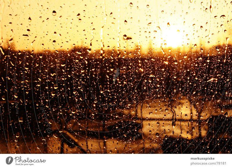 it's raining cats and dogs Sonnenuntergang Fenster Regen Wetter Fensterscheibe Glas Wassertropfen
