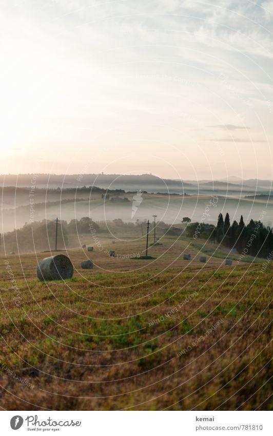 Like the first morning Himmel Natur Pflanze schön Sommer Baum Landschaft Wolken Umwelt Wiese Feld Nebel frisch Schönes Wetter Landwirtschaft Italien