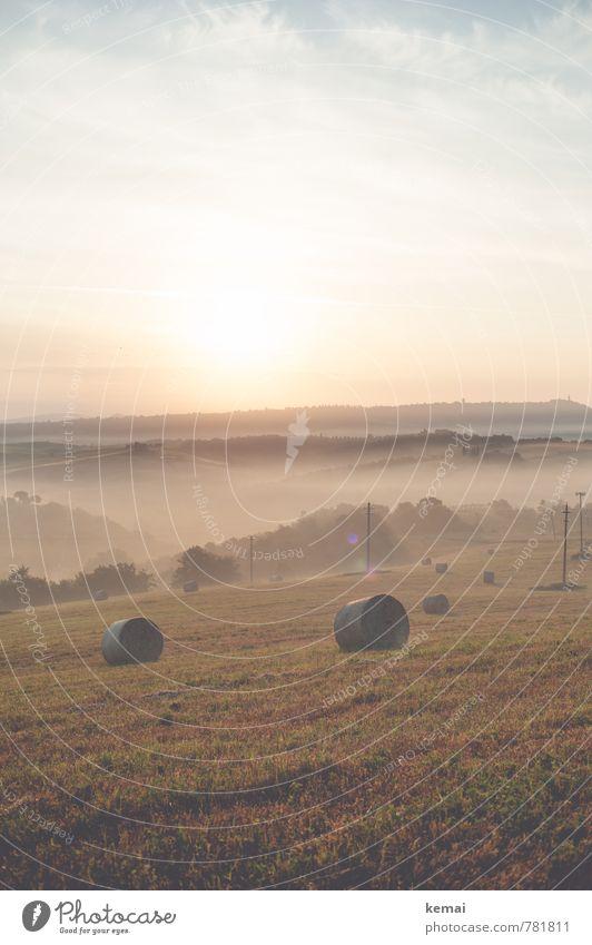 Morning has broken Himmel Natur Ferien & Urlaub & Reisen schön Sommer Baum Landschaft Wolken Ferne Umwelt Wiese Feld Nebel Tourismus frisch Ausflug