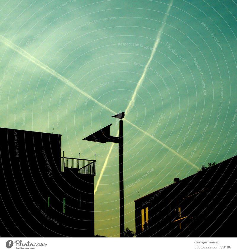 Moorhuhn Reallife 3D Vogel Haus Silhouette Visier zielen Laterne Wolken Fenster Licht gelb grün schwarz dunkel Balkon schießen Stab Sträucher Zielkreuz