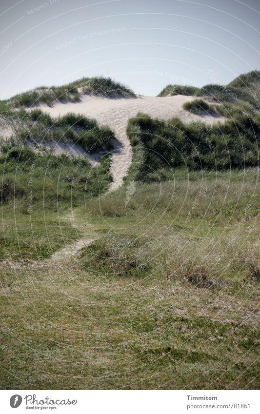 Bergtour. Ferien & Urlaub & Reisen Umwelt Natur Sommer Pflanze Dünengras Küste Nordsee einfach natürlich grün Gefühle ästhetisch Genauigkeit ruhig Fußweg
