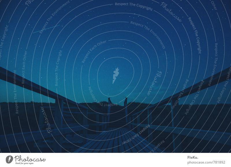 sehr blaue Stunde Ausflug Abenteuer Umwelt Natur Landschaft Urelemente Himmel Wolkenloser Himmel Nachthimmel Stern Küste Strand Nordsee Fußgänger Wege & Pfade