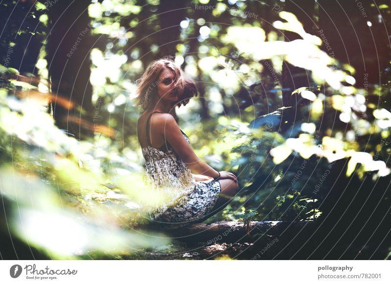 ... Mensch Frau Natur Jugendliche Pflanze schön Sommer Baum Junge Frau Landschaft 18-30 Jahre Wald Umwelt Erwachsene Gefühle feminin