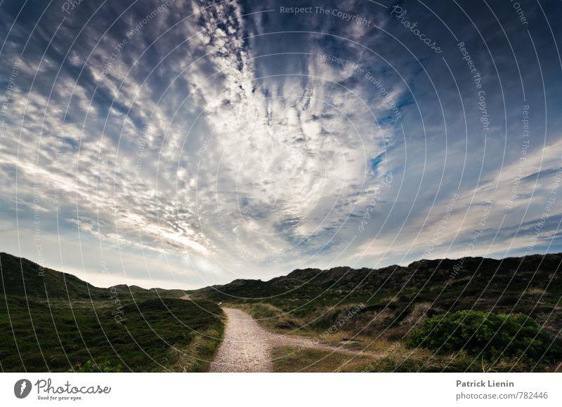 Dünenweg Himmel Natur Ferien & Urlaub & Reisen Pflanze Sommer Erholung Landschaft Wolken ruhig Ferne Umwelt Wege & Pfade Freiheit Zufriedenheit Wetter Tourismus
