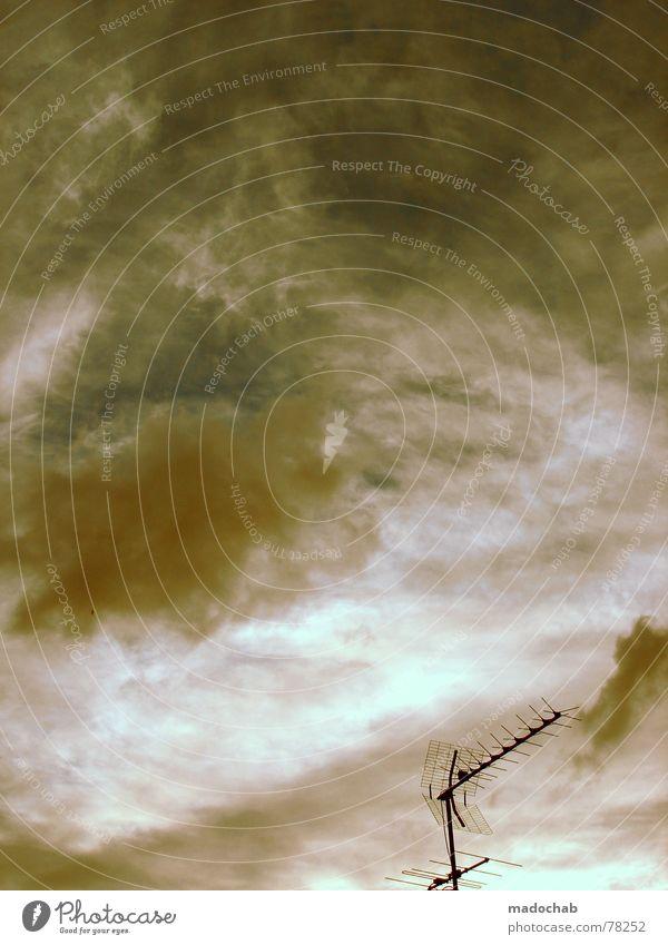 FEEL MY BONES Himmel blau Wolken Herbst Freiheit fliegen oben Regen Wetter Nebel Kommunizieren nass Schönes Wetter Unendlichkeit fallen Kontakt