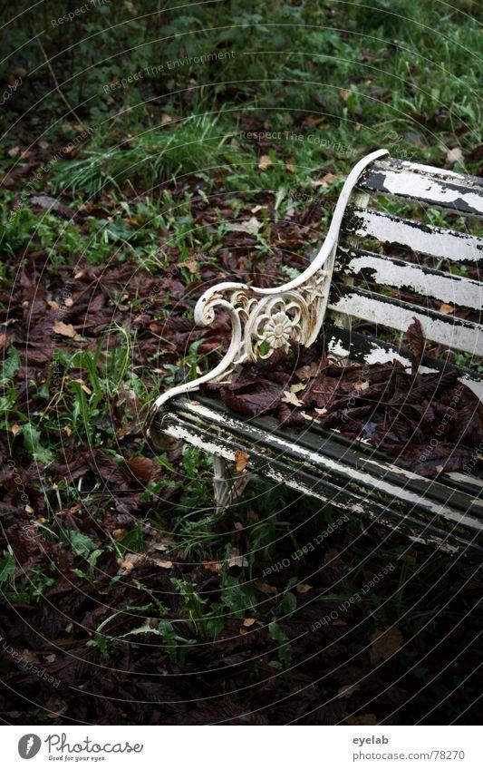 Perfect day for a suicide ? Herbst Winter grün mehrfarbig weiß Parkbank Blatt Hoffnung Pflanze Baum Sträucher dunkel Einsamkeit ruhig töten Mörder verrückt