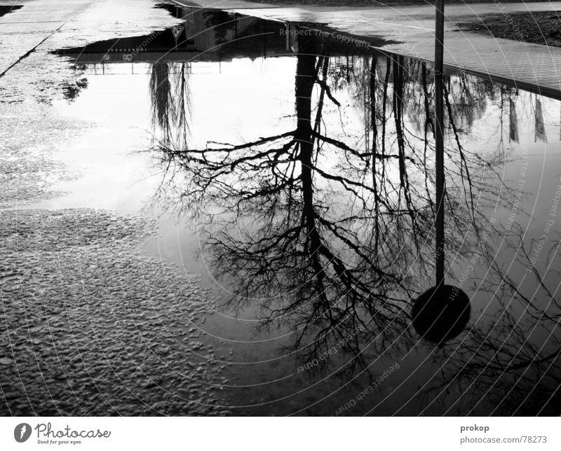 Durchgang = Kaputt weiß ruhig schwarz Straße Herbst Bürgersteig Pfütze Windstille Straßennamenschild