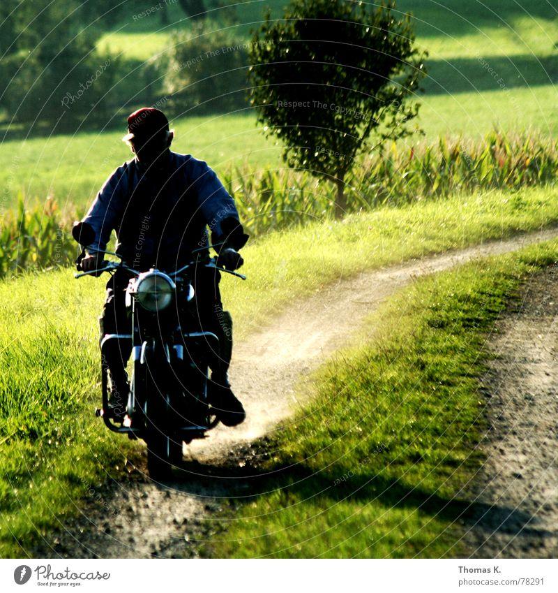 See you grün Baum Landschaft Gras Wege & Pfade Hintergrundbild Sand Fußweg fahren Erinnerung ländlich Scheinwerfer Motorrad Kies Staub Split