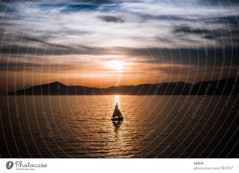 Segelboot Natur Ferien & Urlaub & Reisen Sommer Meer Landschaft Ferne Küste Freiheit Horizont Freizeit & Hobby Idylle Wellen Ausflug Schönes Wetter