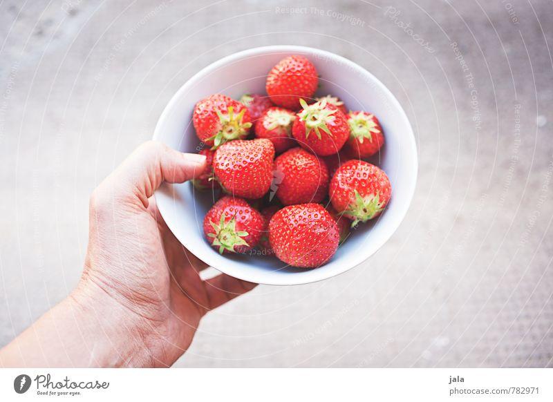erdbeeren Hand feminin natürlich Gesundheit Lebensmittel Frucht frisch Ernährung Finger süß lecker Appetit & Hunger Bioprodukte Schalen & Schüsseln Picknick