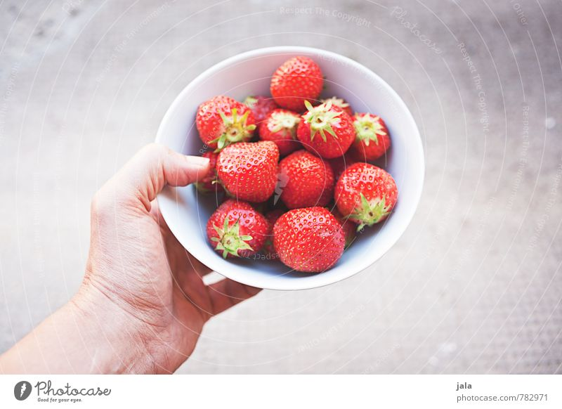 erdbeeren Lebensmittel Frucht Erdbeeren Ernährung Picknick Bioprodukte Vegetarische Ernährung Fingerfood Schalen & Schüsseln feminin Hand frisch Gesundheit