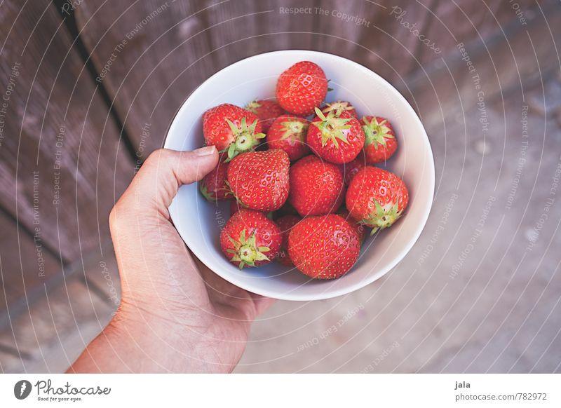 erdbeeren Lebensmittel Frucht Erdbeeren Ernährung Bioprodukte Vegetarische Ernährung Schalen & Schüsseln Gesunde Ernährung feminin Hand Finger 30-45 Jahre