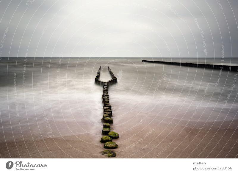 Wahlverwandschaften I Himmel grün Wasser Landschaft Wolken Strand Frühling Küste grau Sand braun Horizont Luft Wetter Wellen Zufriedenheit