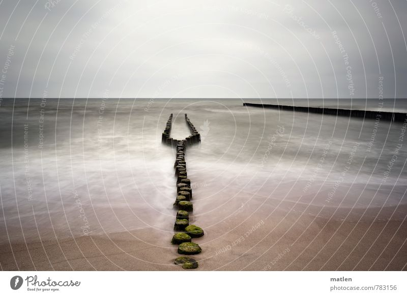 Wahlverwandschaften I Landschaft Sand Luft Wasser Himmel Wolken Horizont Frühling Wetter schlechtes Wetter Wellen Küste Strand Ostsee braun grau grün