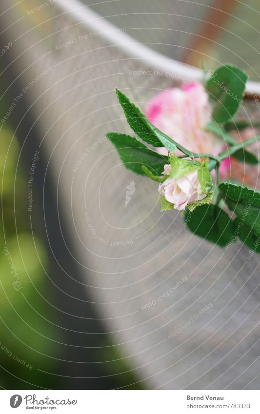 zierradkorb Blume Fahrrad verrückt grün rosa fahrradkorb Maschendraht Metall Kunstblume Rose Kitsch Fröhlichkeit Dekoration & Verzierung Kunststoff Billig Liebe