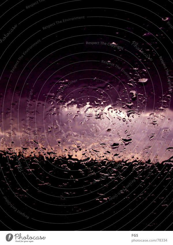 Novembertag #2 rot Wolken ruhig schwarz Farbe Erholung Herbst Fenster Gefühle Stimmung Regen Wetter Kunst Zufriedenheit Wind rosa