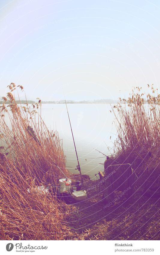 Lass uns angeln #2 Angelköder Angeln Angelrute Erholung Ernährung fangen Ferien & Urlaub & Reisen Fisch hängen hell Himmel ködern Küste Natur See Seeufer sitzen