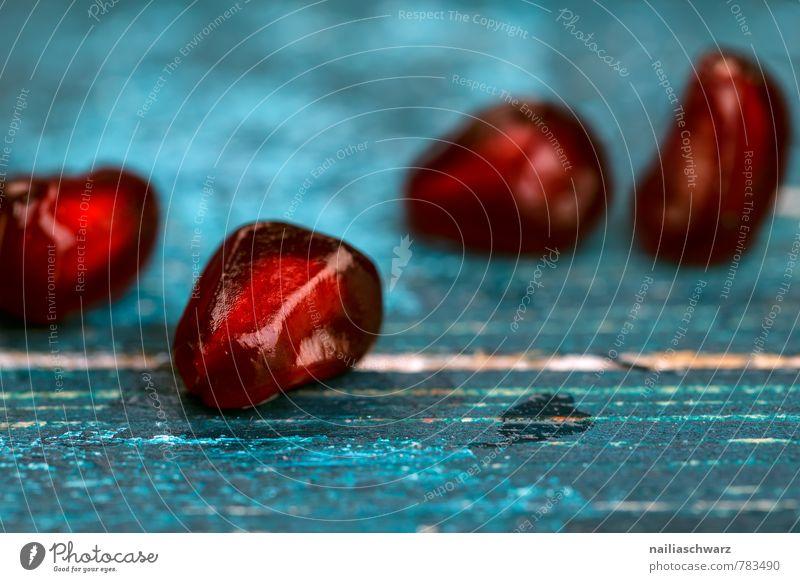 Granatäpfel Frucht Bioprodukte Vegetarische Ernährung Diät Teller Holz exotisch Gesundheit natürlich saftig sauer schön blau rot Energie Farbe rein Granatapfel