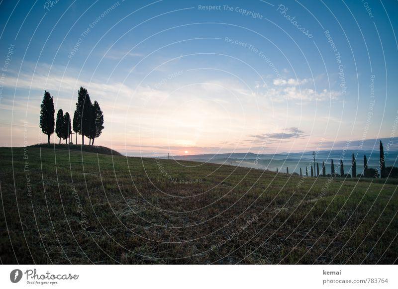 Traumhafte Landschaft Umwelt Natur Himmel nur Himmel Sonne Sonnenaufgang Sonnenuntergang Sonnenlicht Sommer Schönes Wetter Baum Zypresse Wiese Hügel Toskana