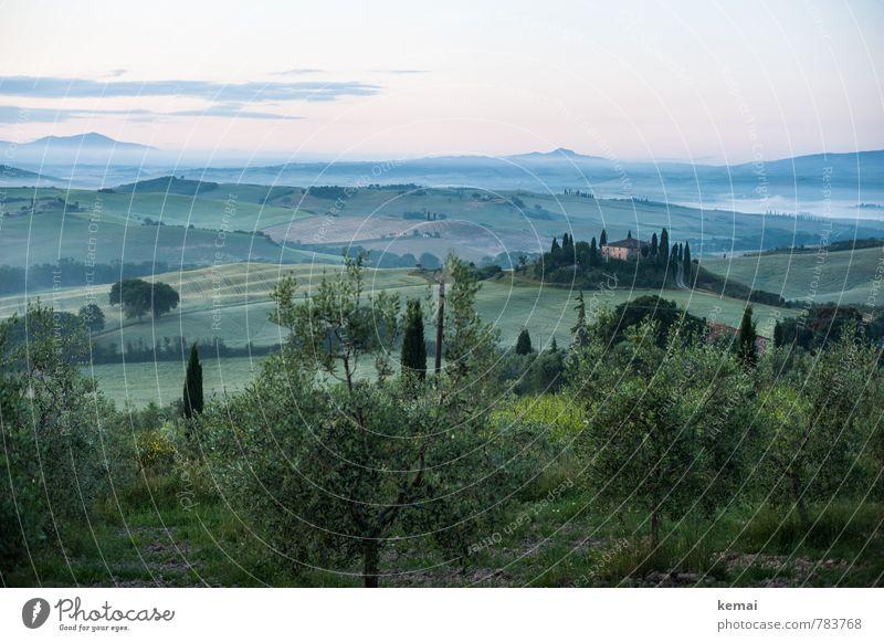 Toskanischer Morgen Himmel Natur Ferien & Urlaub & Reisen Pflanze schön grün Sommer Baum Landschaft ruhig Wolken Haus Ferne Umwelt Freiheit Horizont
