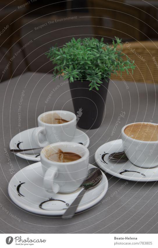coffee to stay Kaffeetrinken Espresso Teller Tasse Löffel Lifestyle Grünpflanze Erholung sprechen Freundlichkeit Zusammensein grau grün schwarz weiß genießen