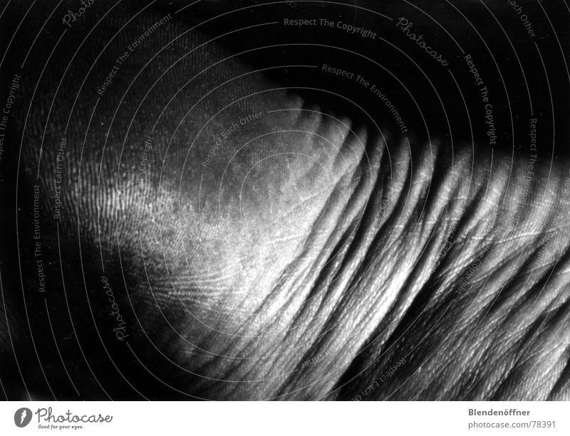 Fußlandschaft Licht Wellen Schatten Falte Schwarzweißfoto Beine Gliedmaßen Körper Landschaft Makroaufnahme Strukturen & Formen