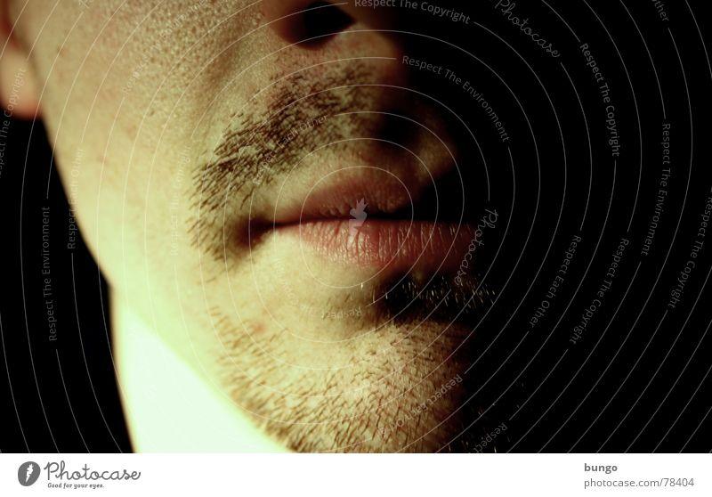 Bartstudie, die dritte Kinnbart Oberlippenbart unhygienisch Lippen unrasiert Ekel altmodisch veraltet maskulin Mann Pubertät Selbstportrait schön Dreitagebart