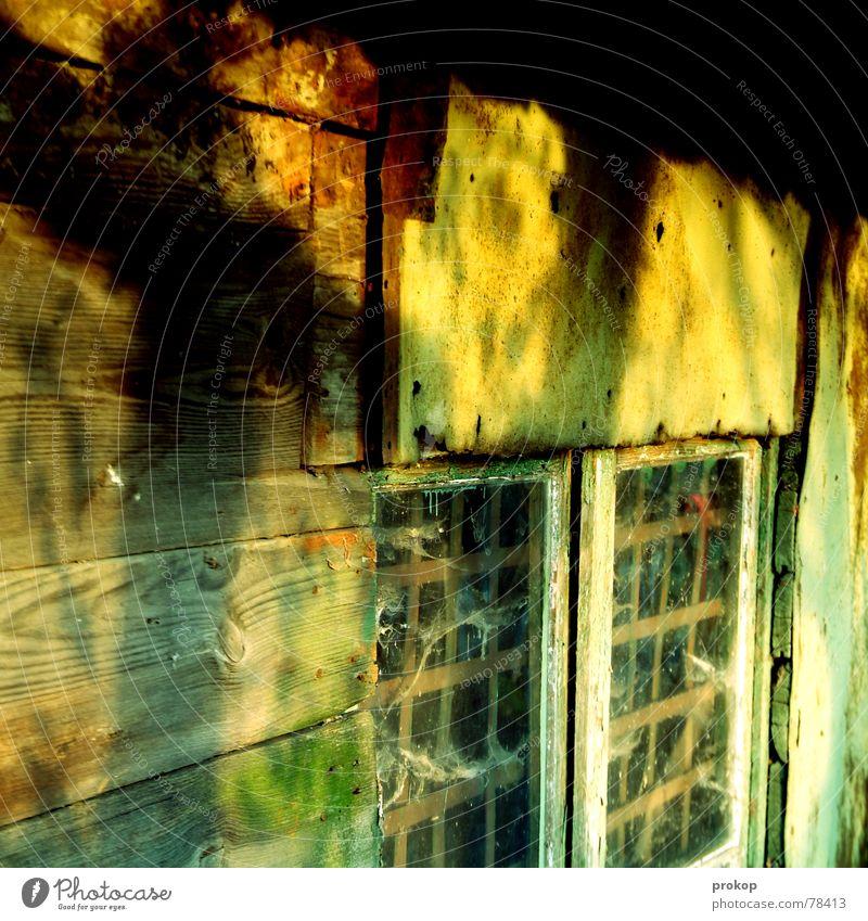 Zu Gast bei Freunden Fenster Holz Glas Hütte Pilz Gift Hexe labil morsch