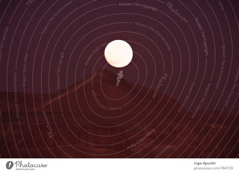 Der Mond ist aufgegangen Umwelt Natur Landschaft Urelemente Erde Himmel Nachthimmel Vollmond Felsen Berge u. Gebirge Wüste Israel Negev dunkel fantastisch