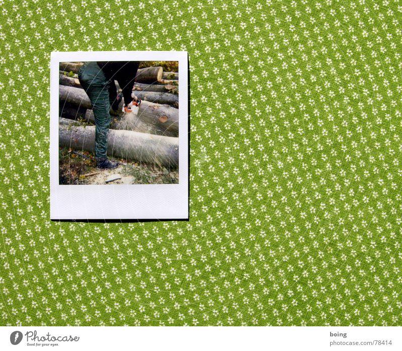 Das Holz eines Baums ist für Leute gut Säge Schnittschutzhose Kettensäge Blume Polaroid Brennholz Waldarbeiter Arbeit & Erwerbstätigkeit Fotografie Tisch