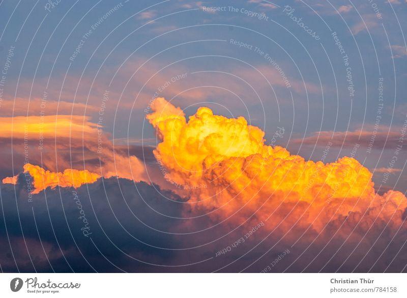 Abendleuchten Natur Ferien & Urlaub & Reisen blau schön weiß Sommer Erholung ruhig Wolken gelb außergewöhnlich Stimmung rosa Luft Zufriedenheit gold