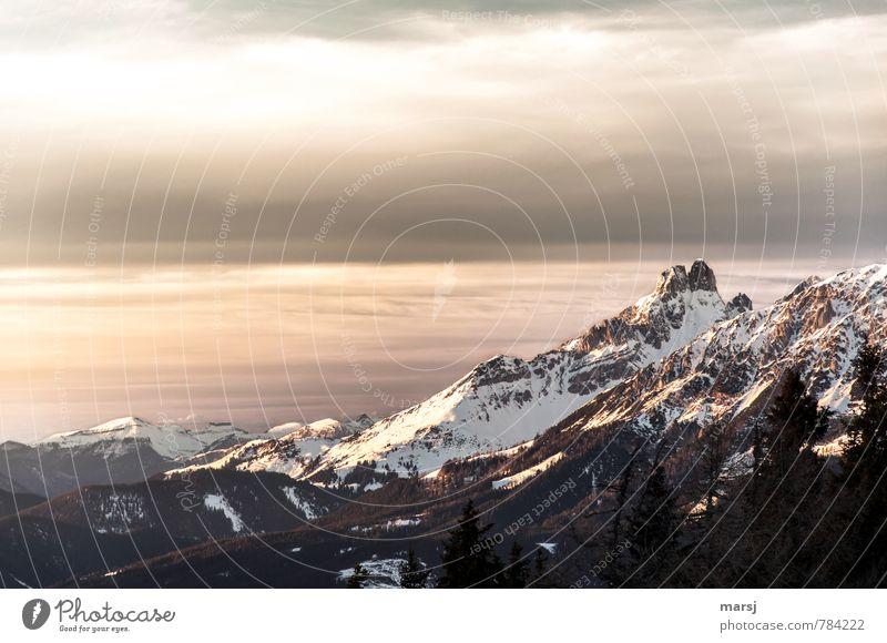 Bischofsmütze im letzten Tageslicht Himmel Natur Ferien & Urlaub & Reisen Landschaft Wolken Winter dunkel Berge u. Gebirge Traurigkeit Schnee natürlich Felsen