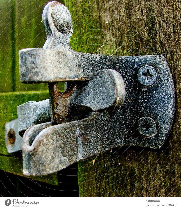 Closed grün Holz Tor Griff grau Detailaufnahme Trauer Verzweiflung Sicherheit Gate Metall Holzbrett old alga algae alt handle board grey