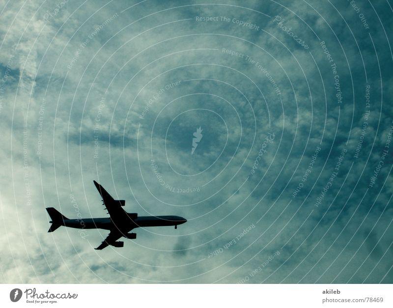Flieger Himmel blau Ferien & Urlaub & Reisen ruhig Wolken Freiheit Luft Flugzeug Luftverkehr Freizeit & Hobby Flughafen Düsenflugzeug Düsenjäger