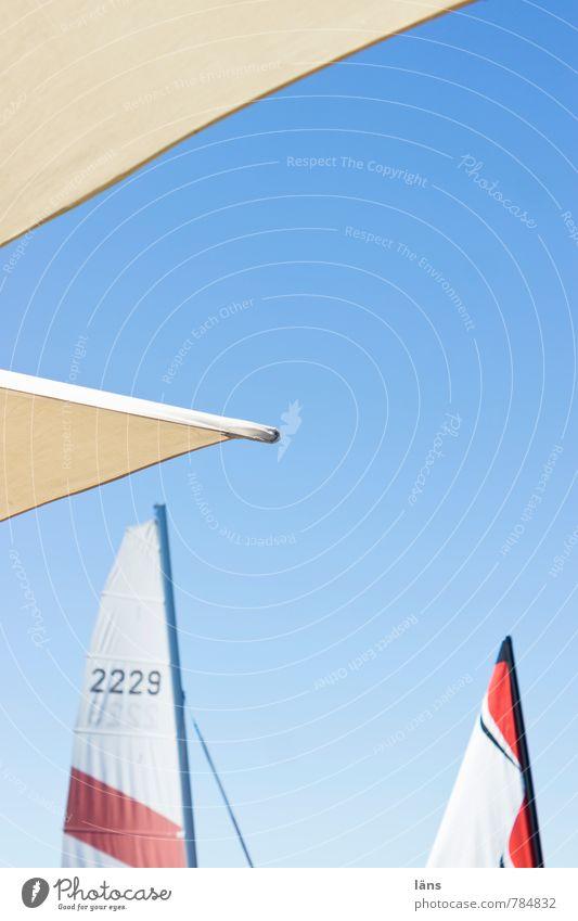 sommerwind Himmel Ferien & Urlaub & Reisen blau Sommer Sonne Erholung Freude Freiheit Freizeit & Hobby Tourismus Ausflug Beginn Wolkenloser Himmel Leidenschaft
