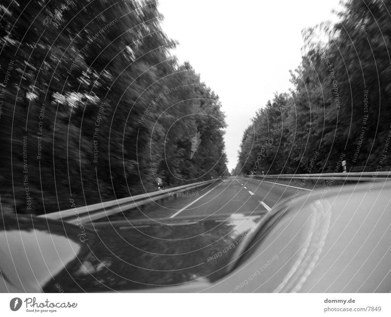 car-ride unterwegs Mobilität fahren PKW Straße kaz
