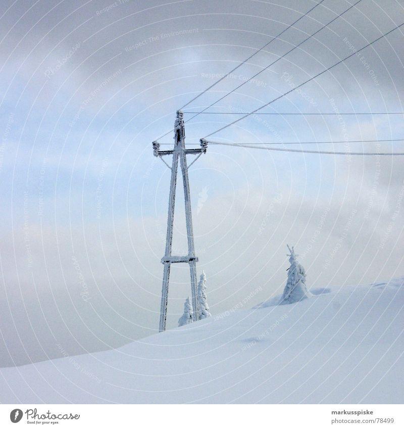 schnee strom kalt unberührt Tanne Schnee alpin Winter Elektrizität Holz Wolken Eis Alpen mädchenhaft hochalpin Strommast Leitung Himmel