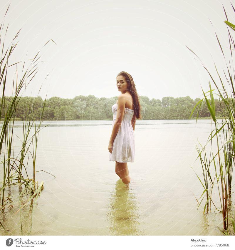 zugewandt Natur Jugendliche schön Wasser Sommer Baum Junge Frau 18-30 Jahre Erwachsene natürlich Schwimmen & Baden See Regen Körper Idylle ästhetisch