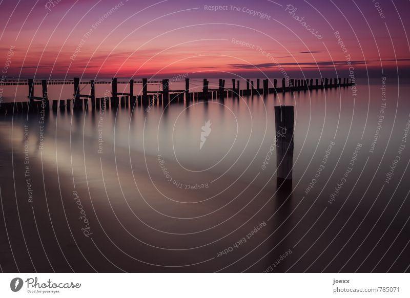 Außenseiter Strand Meer Wasser Himmel Sonnenaufgang Sonnenuntergang Schönes Wetter Küste Ostsee schön violett orange rot schwarz ruhig Horizont Idylle