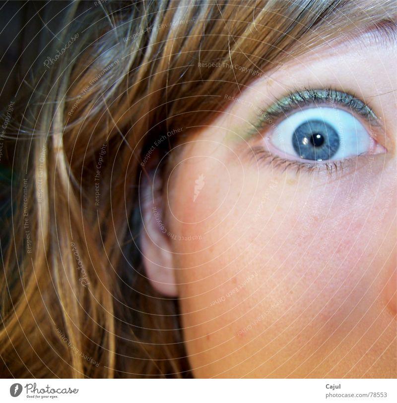 Ach du Schreck Pupille Wimpern Augenbraue erschrecken Schrecken Sinnesorgane Nervosität Angst erstaunt Überraschung Lidschatten Ohrläppchen Publikum Mittelohr