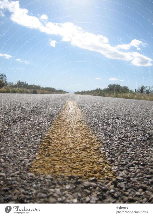Fahrbahnmarkierungen eines amerikanischen Highways aus nächster Nähe an einem sonnigen Tag mit blauem Himmel. Sträucher Borte Ferne Fernstraße Streifen Asphalt