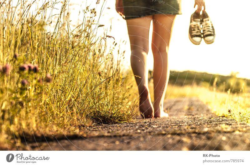 go in sunset Mensch Jugendliche Junge Frau 18-30 Jahre gelb Erwachsene Wärme Leben feminin Beine gold Schuhe frei laufen einzigartig Rock