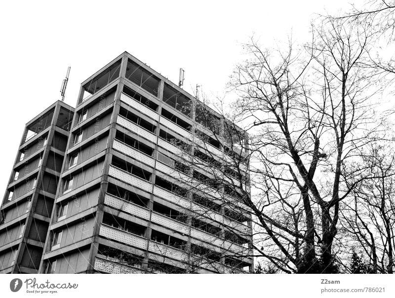 Wie in alten Zeiten Stadt Baum dunkel kalt Architektur Gebäude Stimmung Ordnung Hochhaus Sträucher Perspektive planen Verfall Stadtzentrum