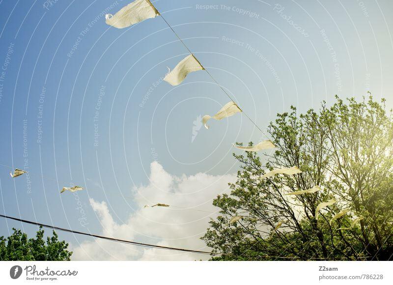 summer feeling Umwelt Natur Landschaft Himmel Wolken Sonne Sonnenlicht Sommer Schönes Wetter Baum Sträucher Garten grün Ferien & Urlaub & Reisen Freiheit