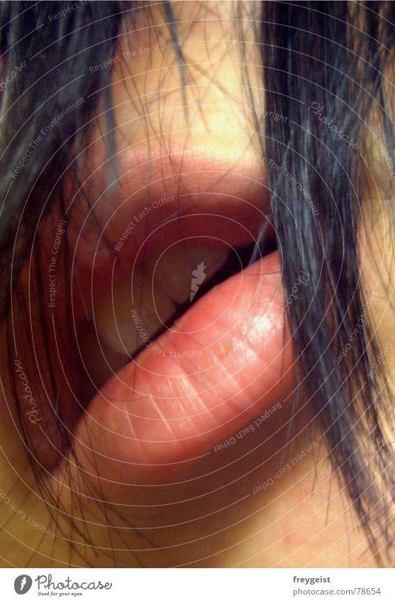 Sexy...mit Haut und Haaren Frau schwarz Gesicht Gefühle Haare & Frisuren rosa Zähne Lippen violett hauchen atmen Mensch