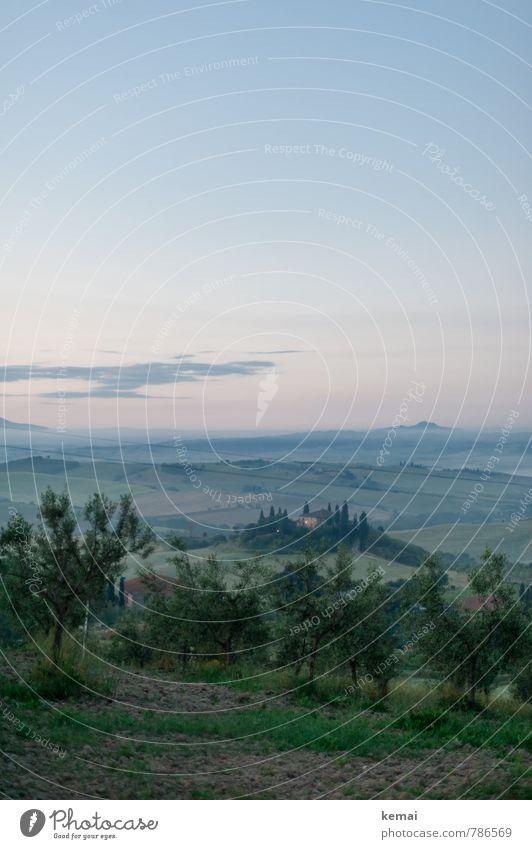 Aus der Ferne Himmel Natur Ferien & Urlaub & Reisen Pflanze schön grün Sommer Landschaft ruhig Wolken Haus Umwelt Freiheit Feld Nebel