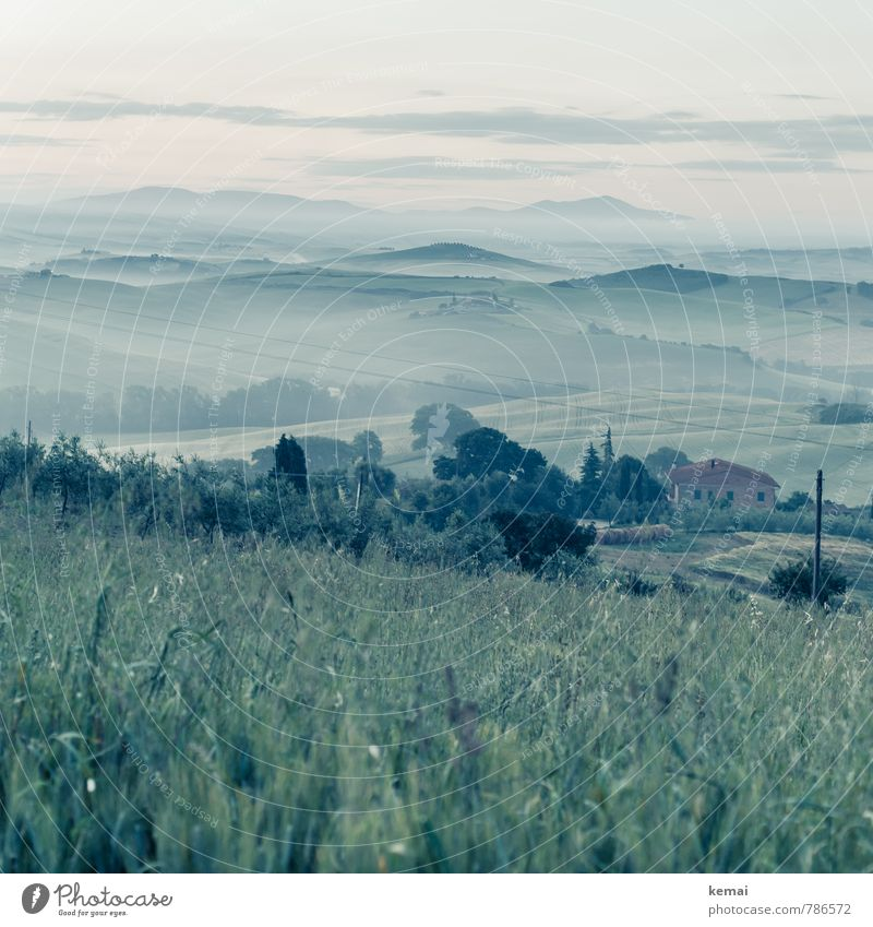 While the earth sleeps Umwelt Natur Landschaft Himmel Wolken Horizont Sommer Schönes Wetter Nebel Gras Sträucher Wiese Hügel Toskana Italien Haus frisch grün